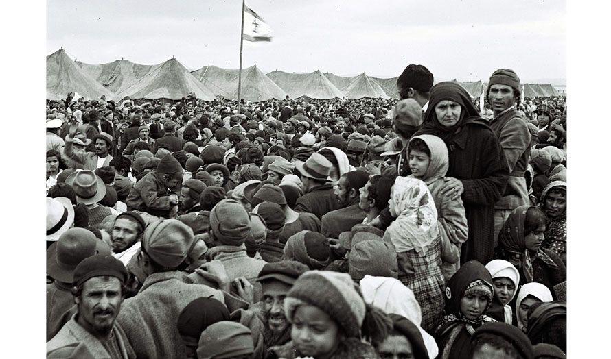 argumenter for innvandring