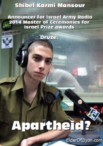 shibel poster2